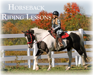 Riding Lessons for Youth and Adults