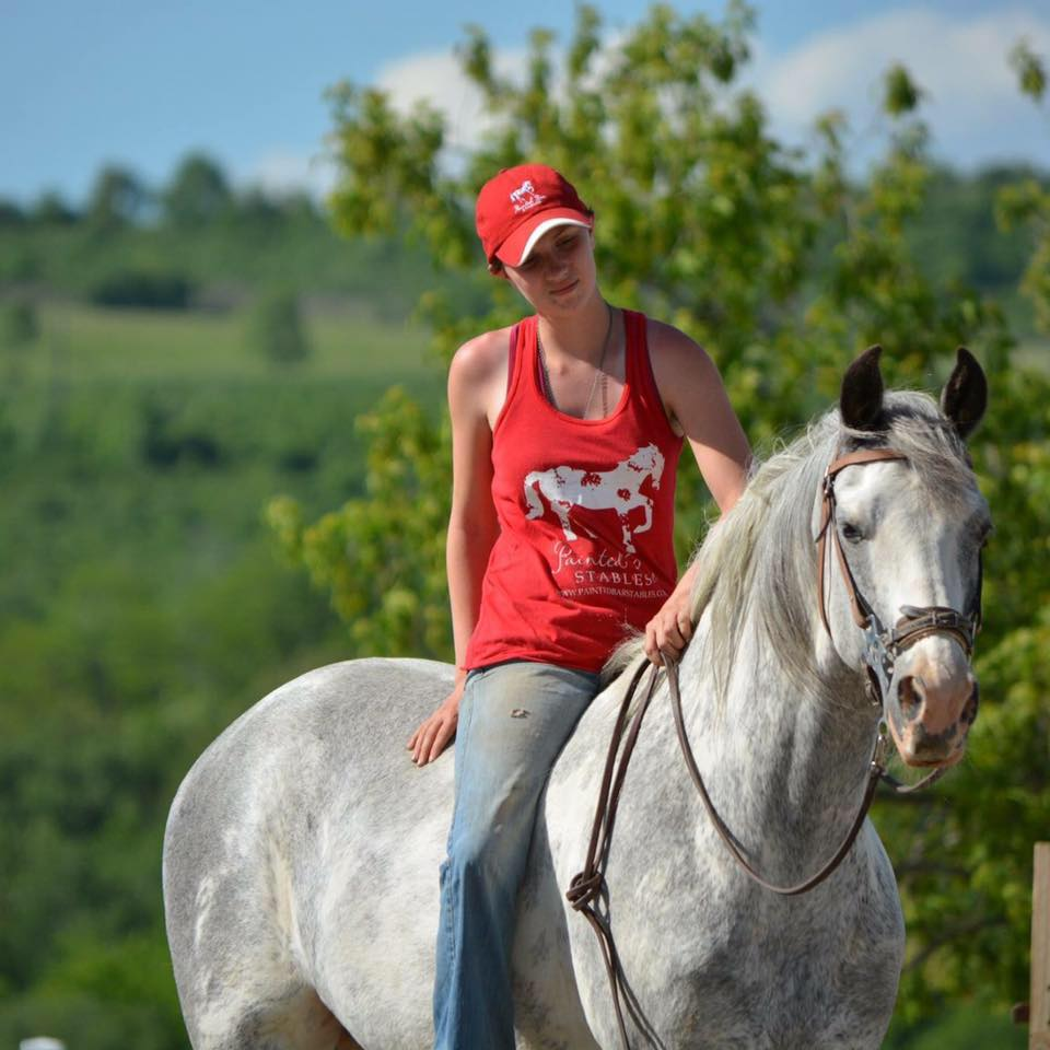 Painted Bar Stables - Horses for Sale