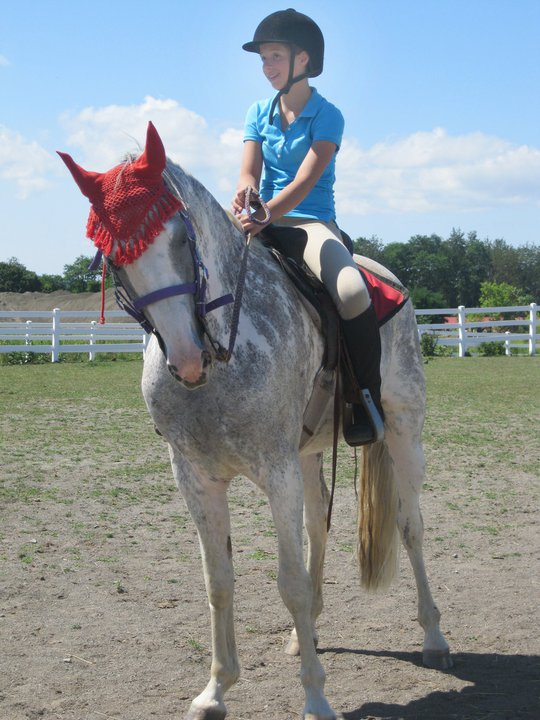 Giddy on a Gaited